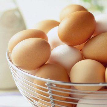 telur_untuk_bayi